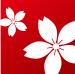 Język japoński sakura