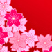 Język japoński sakura różowa